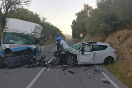 Truck driver killed in head-on collision