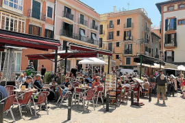 Palma terraces cut by at least 79