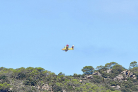 Majorca forest fires brought under control
