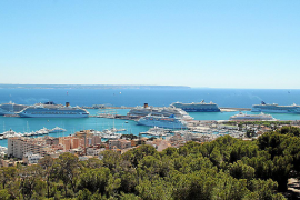 Cruise operator boss defends ships in Palma