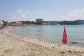Majorcan beach closed because of sewage leak