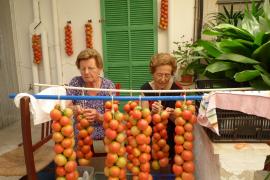 Gardening in Majorca - harvest time