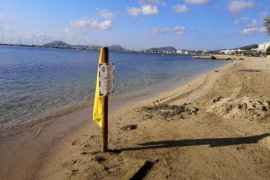 Advice against swimming because of contamination in Puerto Pollensa