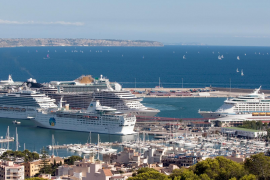 Palma mayor accepts that town hall cannot regulate cruise ships