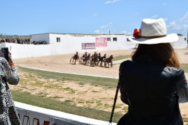 Trotting races at Hats & Horses