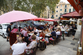"""Palma terraces """"referendum"""" to be held in January"""