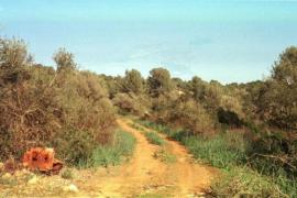 Puntiró