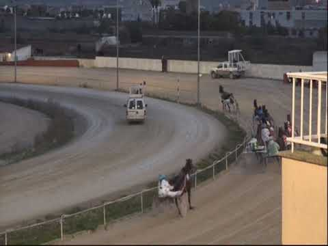 Trotting races at Son Pardo racetrack