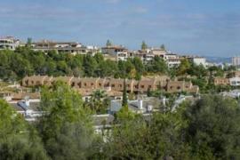 Palma's Big Cash Divide