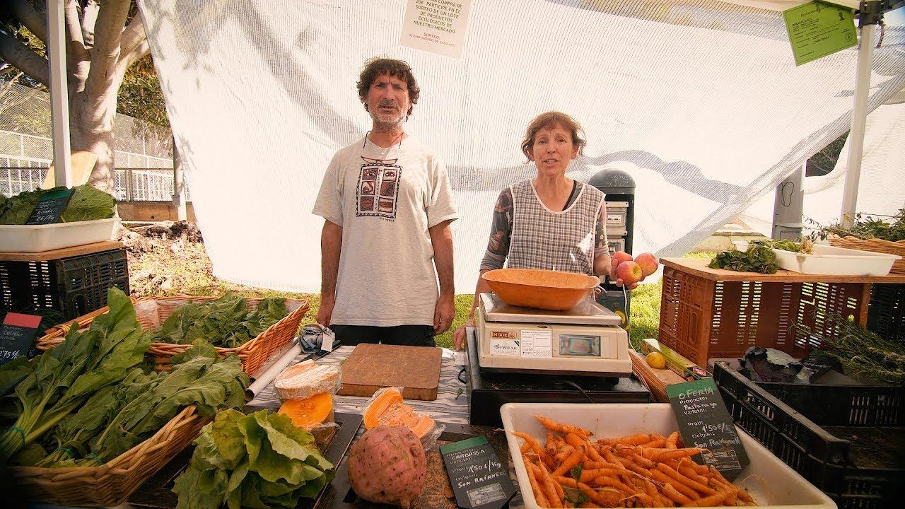 Eco producers sing for your supper