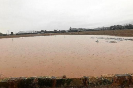 Flooded fields of Sa Pobla, Majorca