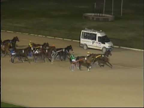 Trotting races at the Son Pardo racetrack in Palma