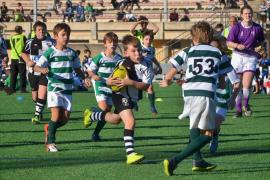 El Toro RC and Ponent RC U14 in San Cugat