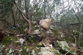Investigation into satanic rituals in Santa Eugenia