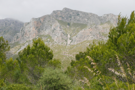 Protection for the 'rossegueres' mountainsides of Majorca