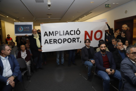 Environmentalists and activists oppose airport expansion