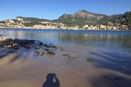 Humans of Majorca say goodbye to 2019