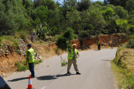 Town hall demands improvements to S'Arracó-Sant Elm road
