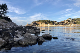 Spotlight on Soller