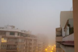 Palma Fog