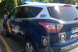 Palma Prostitution Arrests