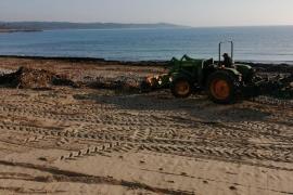 Manacor beach clean-up