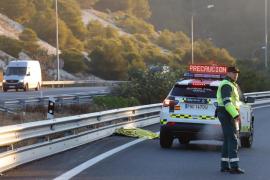 Man killed while walking across Andratx motorway