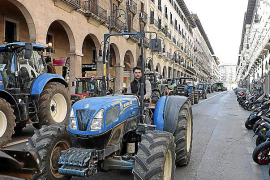 Balearics pressing for more favourable Common Agricultural Policy