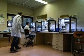 Slight rise in coronavirus deaths