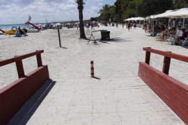 Alcudia planning beach services in early June