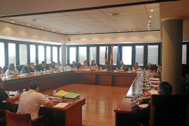 Calvia council freezes certain developments in planning shake-up
