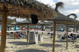 Cala Millor beach closed because of swarm of bees