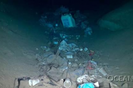 "Plastics having ""disastrous effects"" on seabeds"