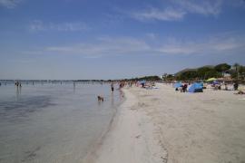 The story of Sa Pobla's lost beach