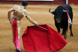 EU puts an end to bullfighting subsidies in animal rights victory