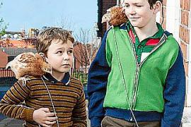 BAFTA short films to show at Es Baluard