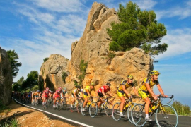 """Council of Majorca to bring """"order"""" to cycling routes"""