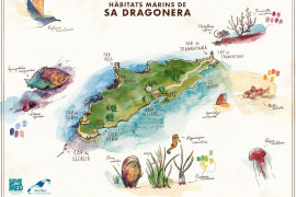 Locals work together to promote Sa Dragonera Marine Protected Area