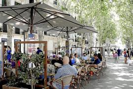 Palma Council to hold a public referendum over Borne terraces