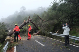 Saturday's storm caused one hundred incidents
