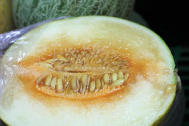 When melon was a late night snack