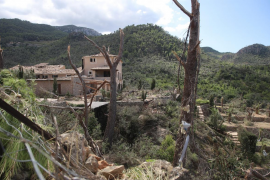 Appeal for volunteers for storm clean-up in Esporles