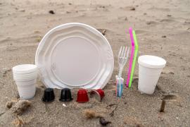 Disposable plastic products legislation delayed until March