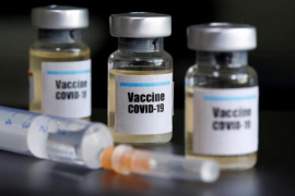"Covid-19 vaccine ""on schedule"""