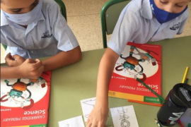 It has been a busy week for Year 3 at Bellver