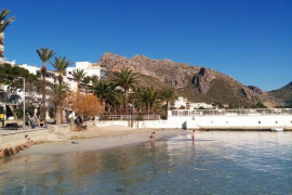 Spring comes early to Puerto Pollensa