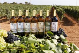 Bodegas Vi Rei, wines with the soul of the sea in Mallorca