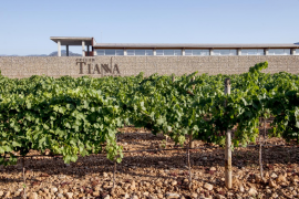 Celler Tianna Negre, organic vineyards and wines with tradition