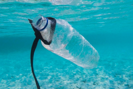 Only 25% of plastic packaging is recycled