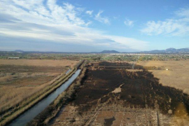 Guardia investigating Albufera fire